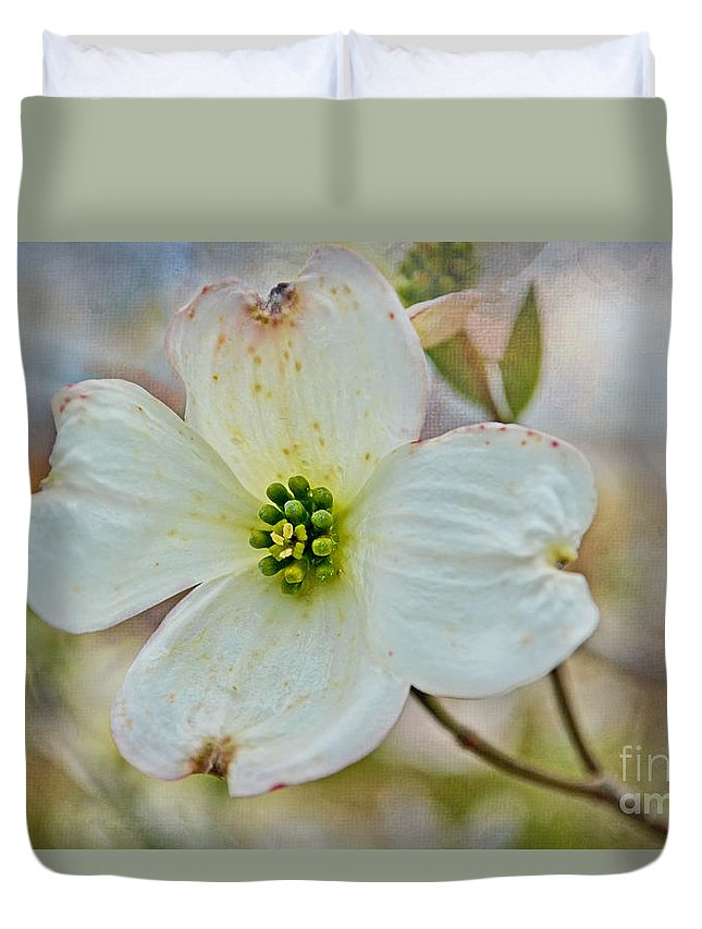 Spring Duvet Cover featuring the photograph Dogwood Blossom by Debbie Portwood