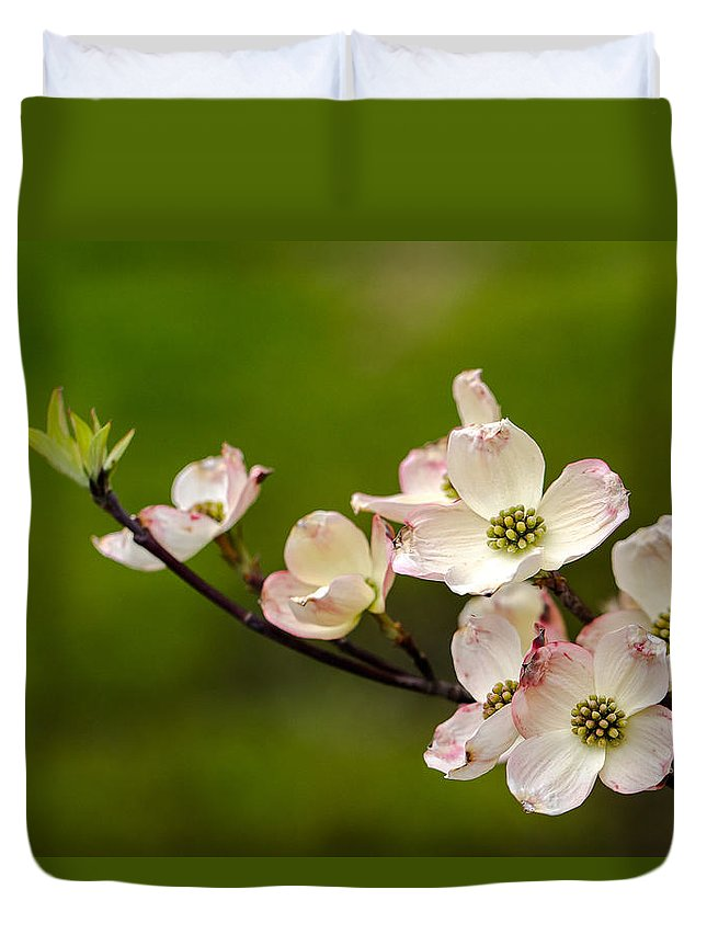 Bloom Duvet Cover featuring the photograph Dogwood Flowers by Gaurav Singh