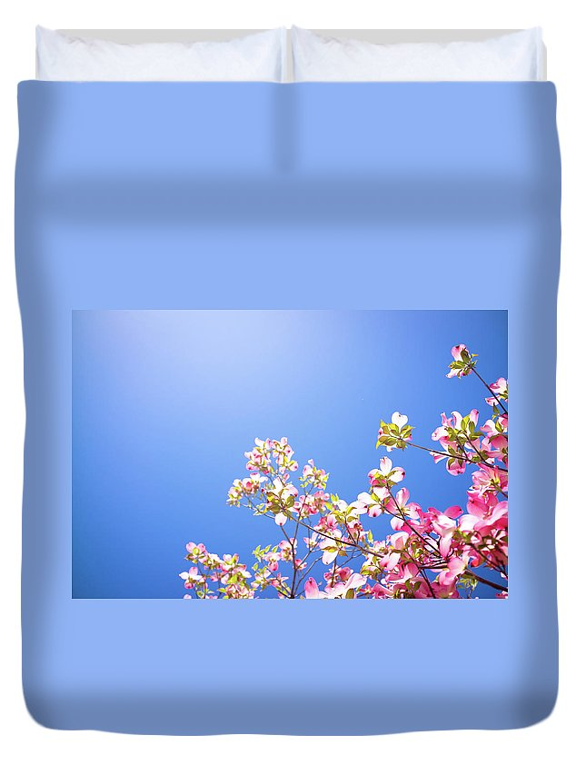 Dogwood Duvet Cover featuring the photograph Dogwood Flowers by Marser