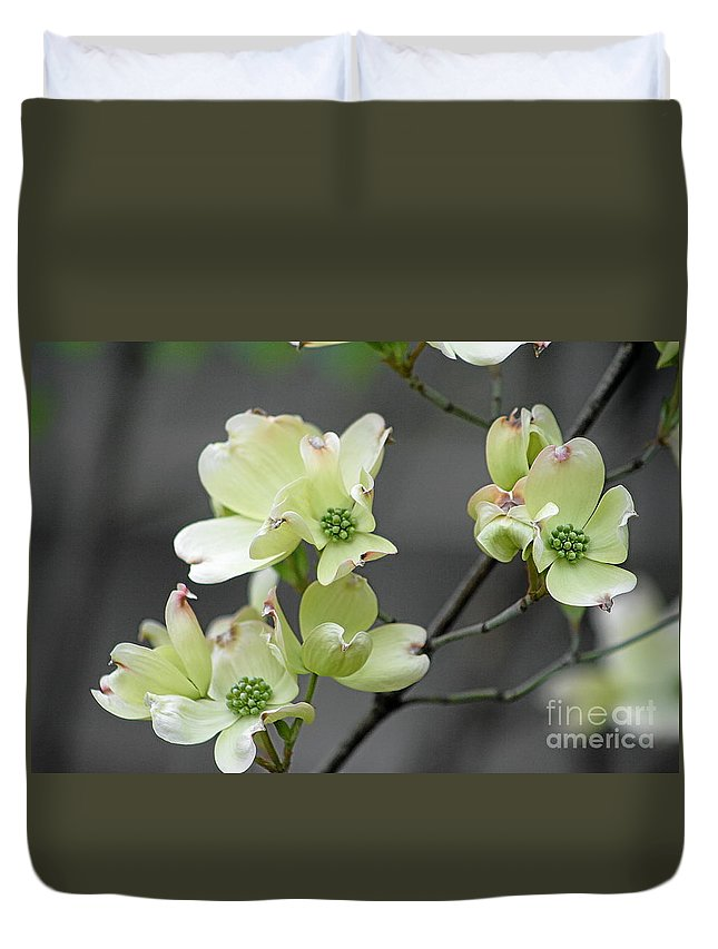 Flowers Duvet Cover featuring the photograph Dogwood In Bloom by Gayle Miller