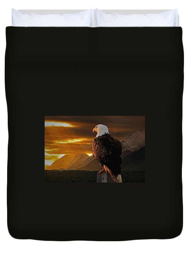 Eagle Duvet Cover featuring the photograph Domain by Ron Day
