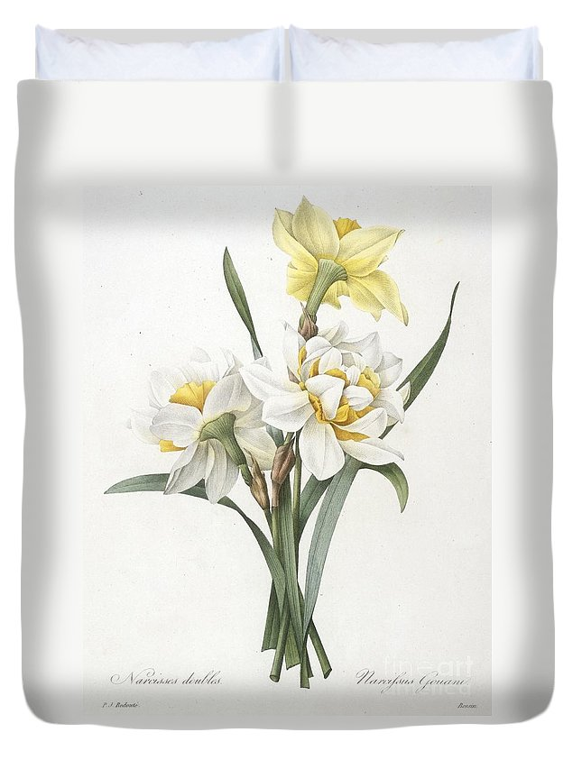 Floral Duvet Cover featuring the painting Double Daffodil by Pierre Joseph Redoute