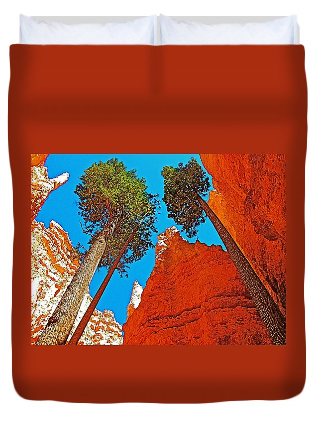 Douglas Firs On Wall Street On Navajo Trail In Bryce Canyon Duvet Cover featuring the photograph Douglas Firs On Wall Street On Navajo Trail In Bryce Canyon National Park-utah by Ruth Hager