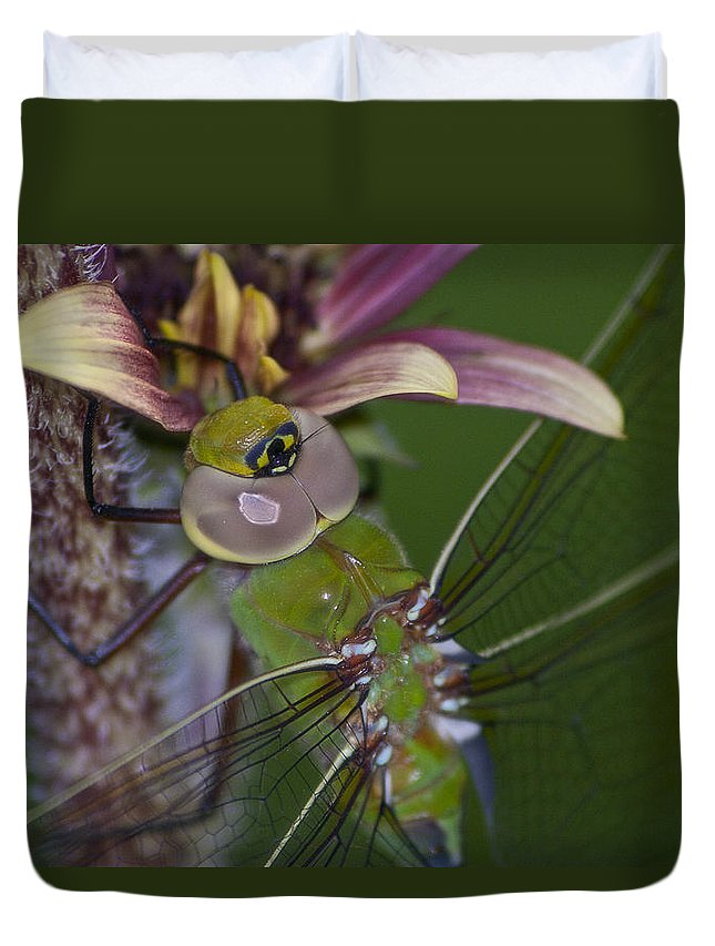 Dragonfly Duvet Cover featuring the photograph Dragonfly by Jeff Shumaker