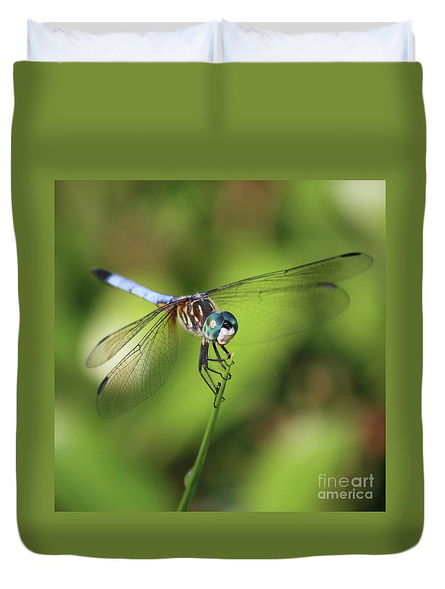 Dragonfly Duvet Cover featuring the photograph Dragonfly Square by Carol Groenen