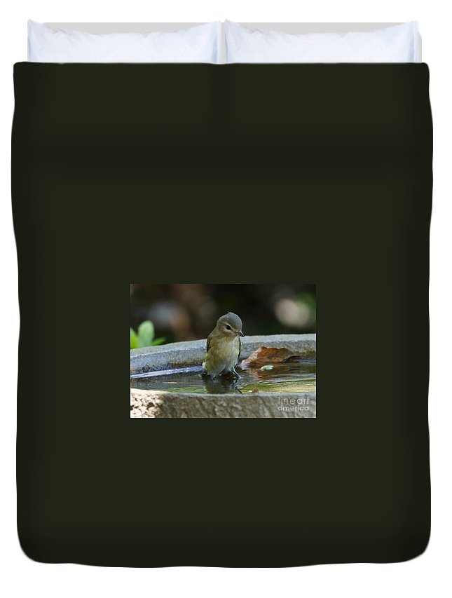Warbling Vireo Duvet Cover featuring the photograph Drenched by Lori Tordsen