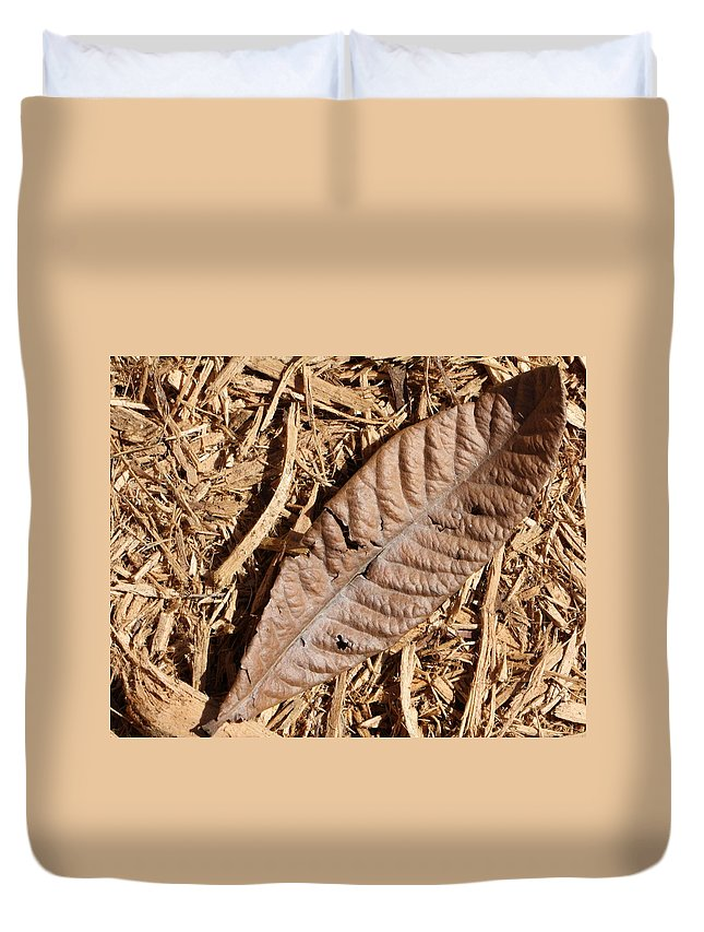 Dried Leaf Duvet Cover featuring the photograph Dried Leaf by Terry Fleckney