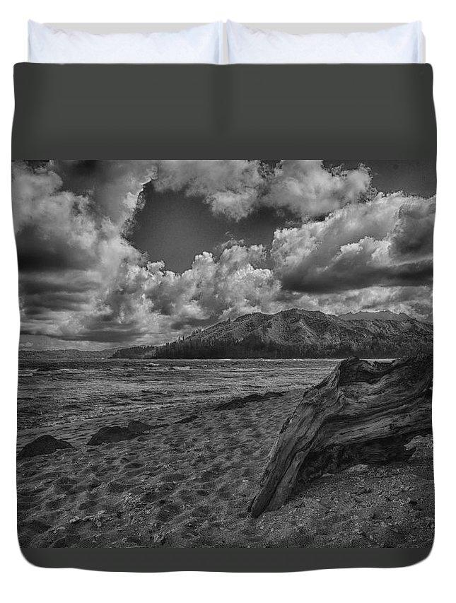 Beach Duvet Cover featuring the photograph Driftwood V4 by Douglas Barnard