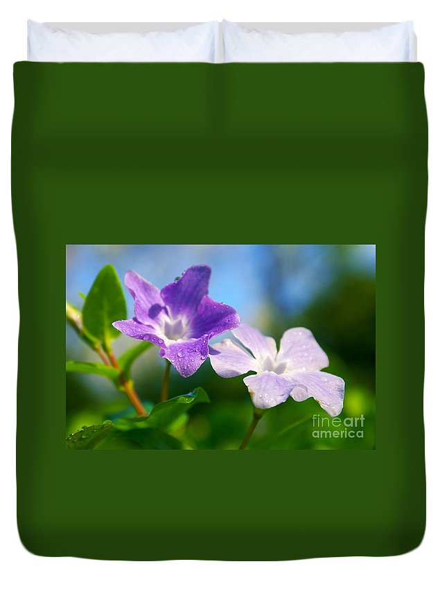 Abstract Duvet Cover featuring the photograph Drops On Violets by Carlos Caetano