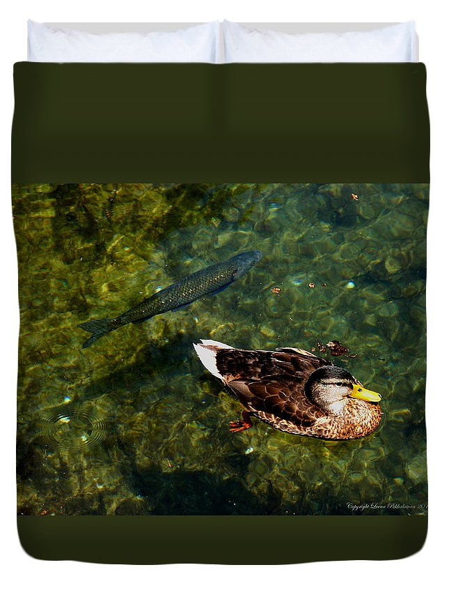 Wild Duck Duvet Cover featuring the photograph Duck And Fish by Leena Pekkalainen