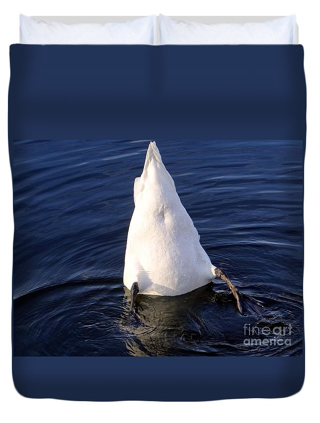 Pond Duvet Cover featuring the photograph Duck Diving by Ed Weidman