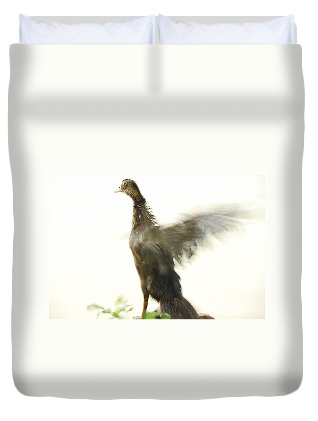 Duck Duvet Cover featuring the photograph Duck Flapping Wings by Charles Beeler