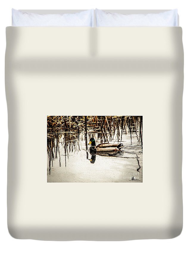 Mallard Duvet Cover featuring the photograph Duck On The Water by Grace Grogan