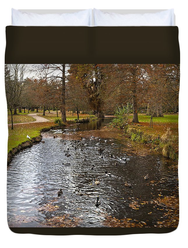 Forest Floor Duvet Cover featuring the photograph Ducks And Leaves by Maj Seda