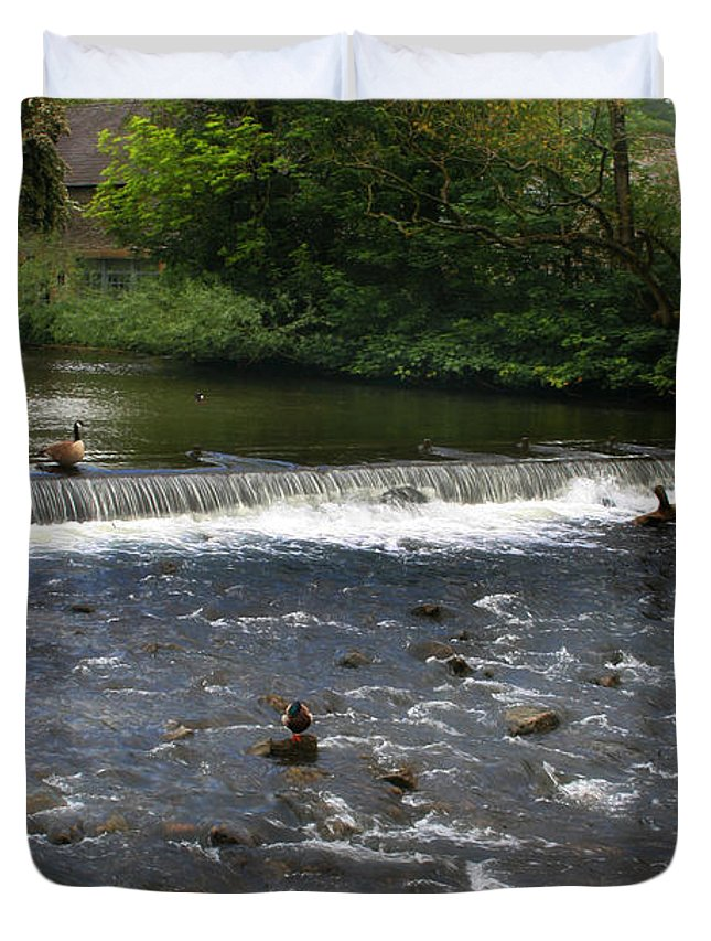 Landscape Duvet Cover featuring the photograph Ducks Enjoying The Open Air by Doc Braham