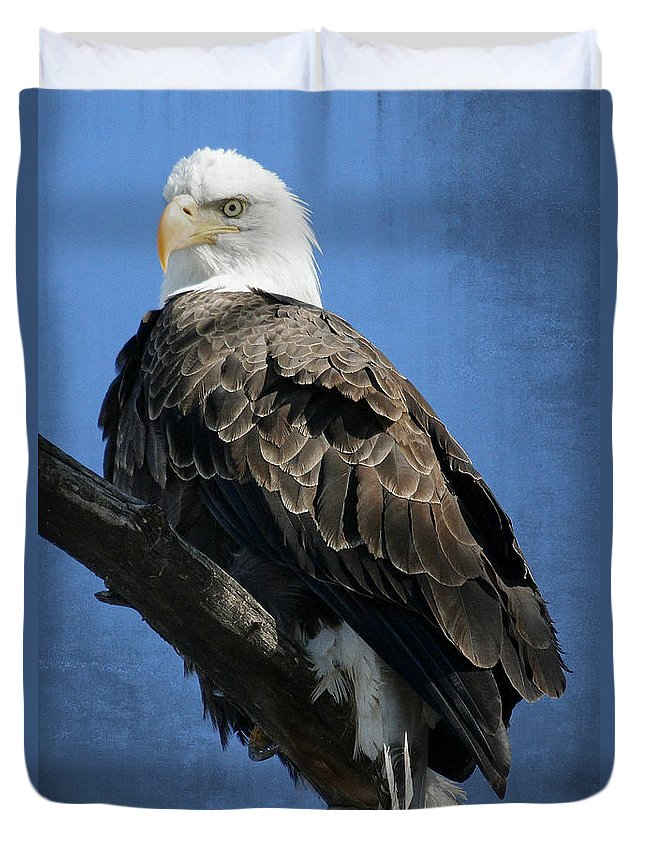 Colorado Duvet Cover featuring the photograph Eagle Eye by Bob Hislop
