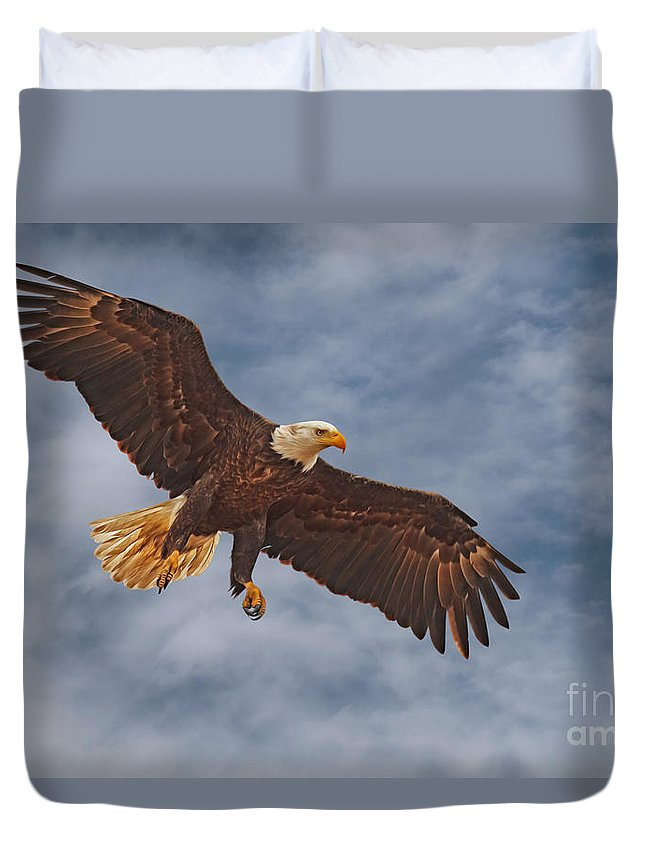Bald Eagle Duvet Cover featuring the photograph Eagle In The Sky by Beth Sargent