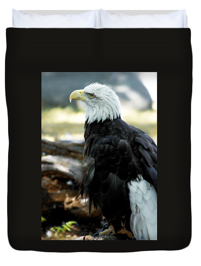 Eagles Duvet Cover featuring the photograph Eagle by Optical Playground By MP Ray