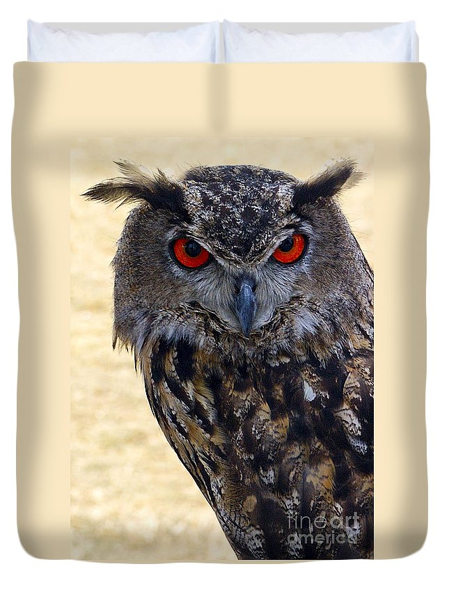 Owl Duvet Cover featuring the photograph Eagle Owl by Anthony Sacco