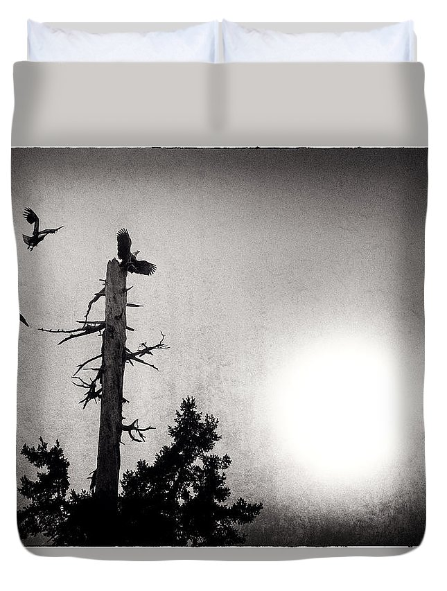 Botanical Garden Vancouver Duvet Cover featuring the photograph Eagles And Old Tree In Sunset Silhouette by Peter v Quenter