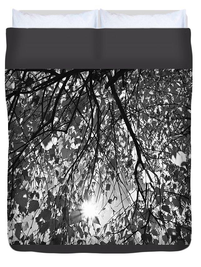 Autumn Duvet Cover featuring the photograph Early Autumn Monochrome by David Pyatt