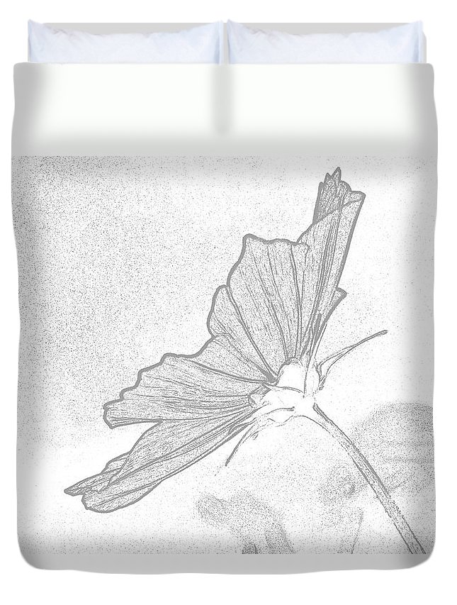 Flower Duvet Cover featuring the photograph Early Dawns Light On Fall Flowers Bw by Thomas Woolworth