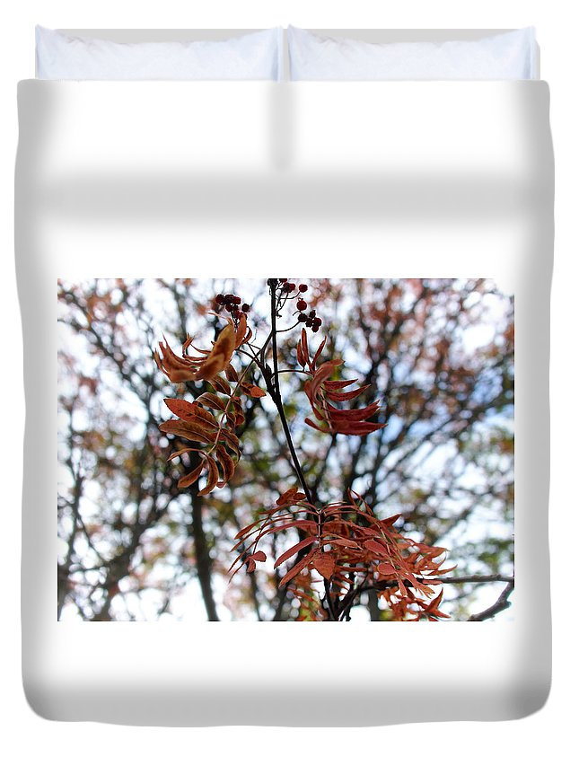 Finland Duvet Cover featuring the photograph Early Fall Of Rowan by Jouko Lehto