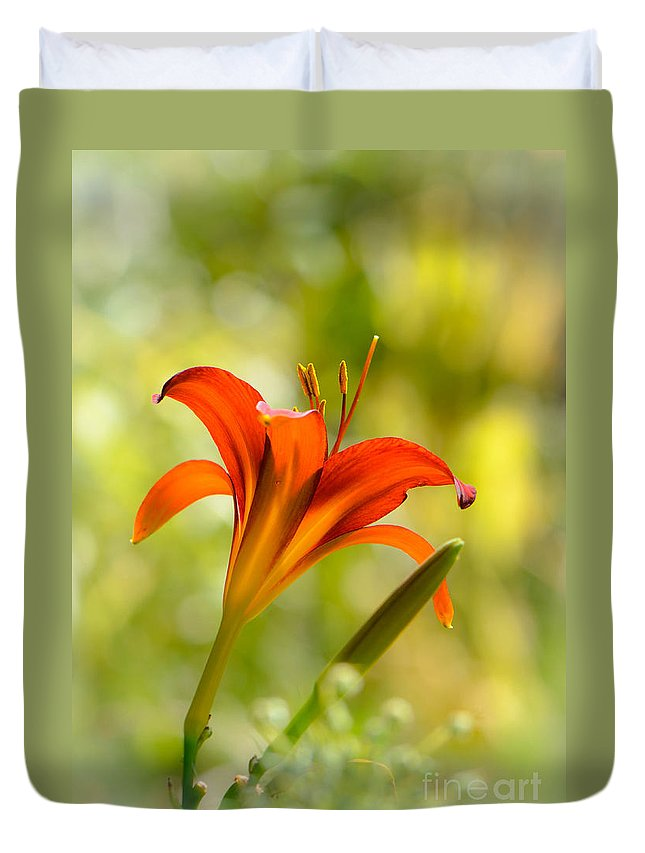 Daylily Duvet Cover featuring the photograph Early Morning Portrait by Amy Porter