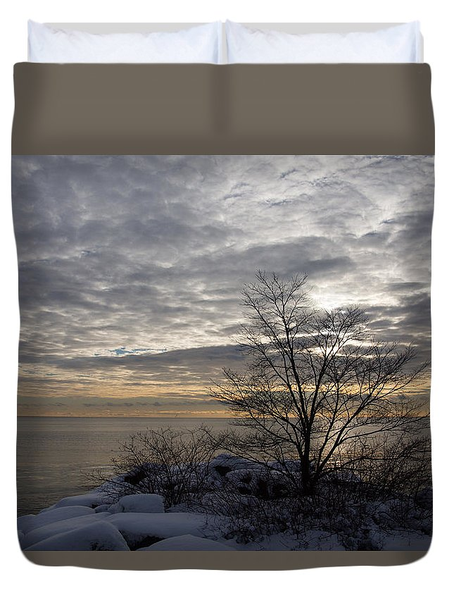 Tree Duvet Cover featuring the photograph Early Morning Tree Silhouette On Silver Sky by Georgia Mizuleva