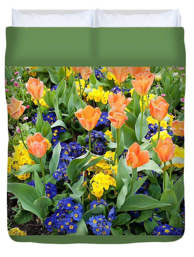 Primrose Duvet Cover featuring the photograph Early Spring by Geraldine Alexander