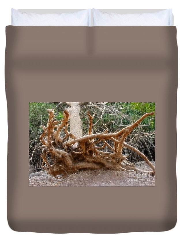 Tree Root Duvet Cover featuring the photograph Eccentric Tree Root Growing In Ein Gedi by Doc Braham