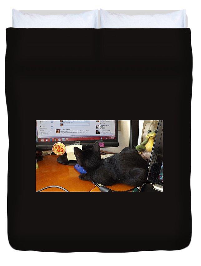 Kitten Duvet Cover featuring the photograph Eclipse Reading Facebook by Jussta Jussta