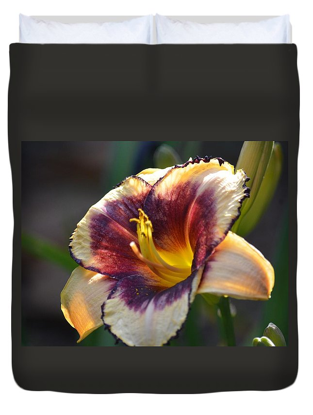 Edged In Crimson - Lily Duvet Cover featuring the photograph Edged In Crimson - Lily by Maria Urso