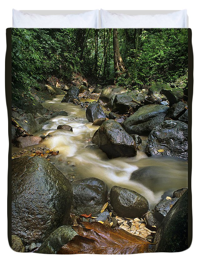 Caribbean Duvet Cover featuring the photograph Edmond Forest Reserve On Saint Lucia by Dave Welling