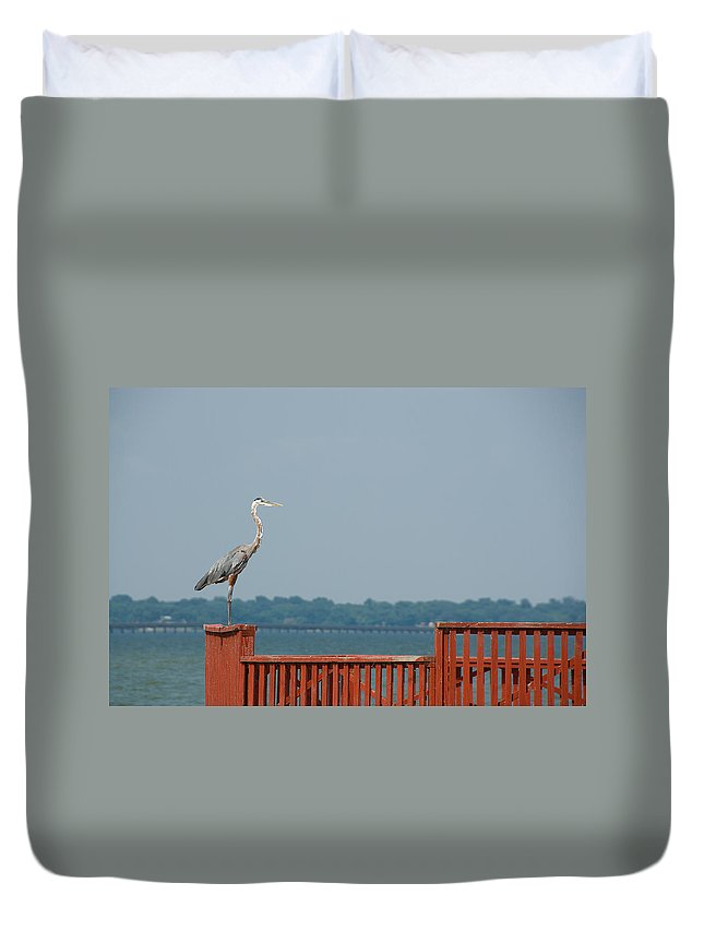 Egret Duvet Cover featuring the photograph Egret by Charles Beeler