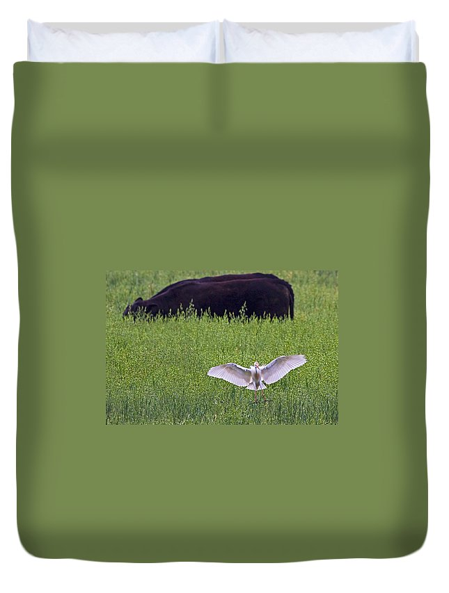 Cattle Egret Duvet Cover featuring the photograph Egret Egress by Gary Holmes