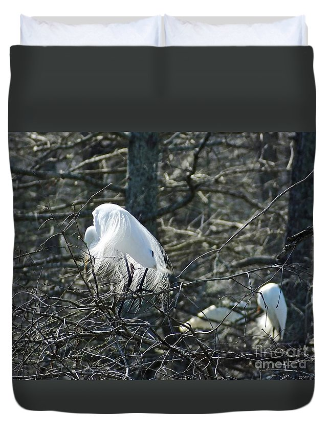 Egret Duvet Cover featuring the photograph Egret In Full Display Lake Martin Louisiana by Lizi Beard-Ward