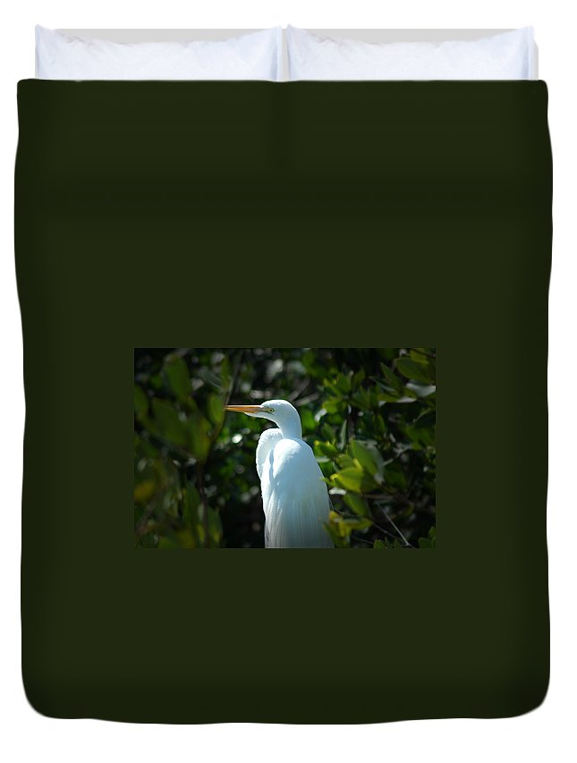 Egret Duvet Cover featuring the photograph Egret Of Sanibel 9 by David Weeks