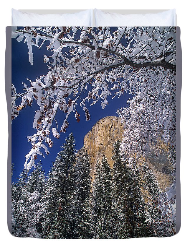 America Duvet Cover featuring the photograph El Capitan Framed By Snow Covered Black Oaks California by Dave Welling