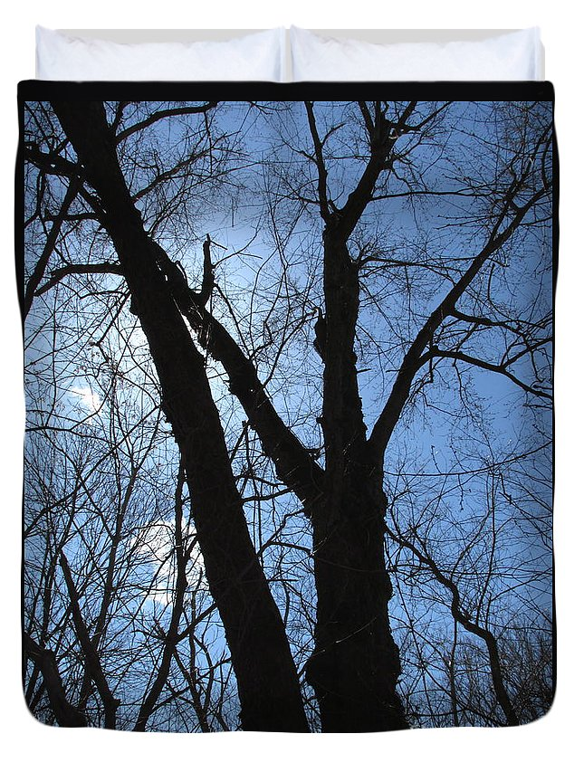 North American Oldgrowth Seasonal Decidious Woodland Ancient Maple Tree Silhoutte Elder Maple Arborscape Treescapes Woodscapes Eastern Hardwood Forest Susquehanna River Flood Plain Wetland Giant Trees Big Trees Old Trees Large Trees Blue Sky Silhouette Endangered Natural Landscapes Winter Forest Winterscapes Massive Maple Red Maple Sugar Maple Syrup Natural Design In Nature Prints Wildlife Habitat Wilderness Animal Sanctuary For Life Monster Maple Blue Skies Blue Skyscapes Natural Habitat Duvet Cover featuring the photograph Elder Maple Silhouette by Joshua Bales