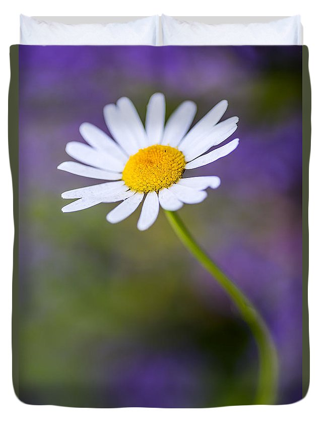 Daisy Duvet Cover featuring the photograph Elegance by Vishwanath Bhat