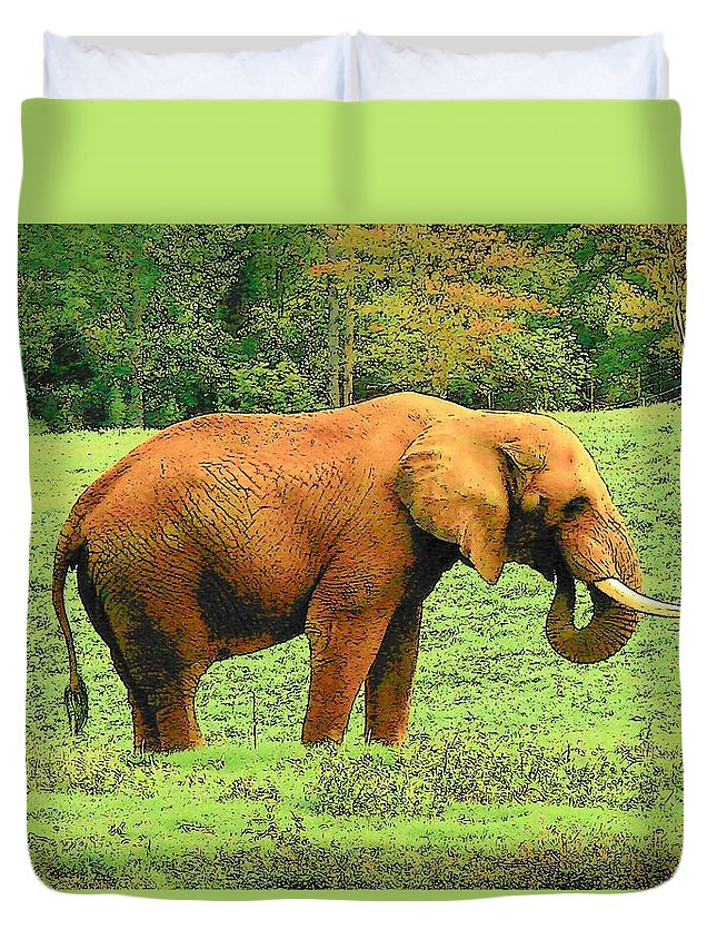 Digital Art Duvet Cover featuring the photograph Elephant by Rodney Lee Williams