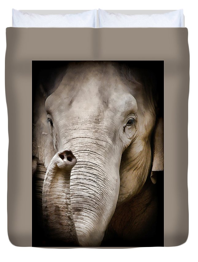 Elephant Duvet Cover featuring the photograph Elephant Trunk by Athena Mckinzie