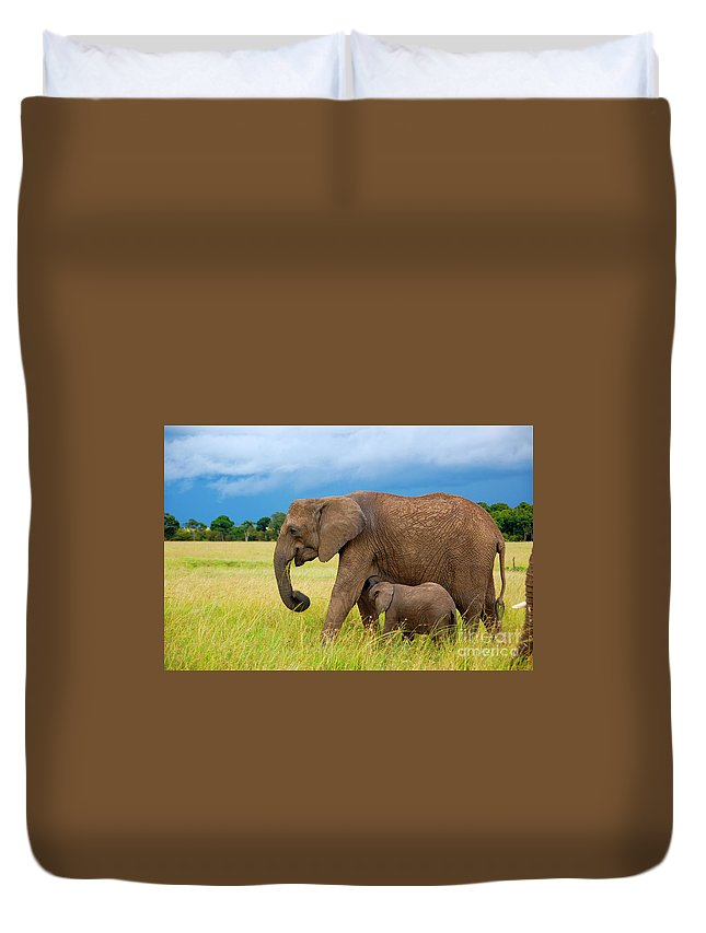 Elephants Duvet Cover featuring the photograph Elephants In Masai Mara by Charuhas Images