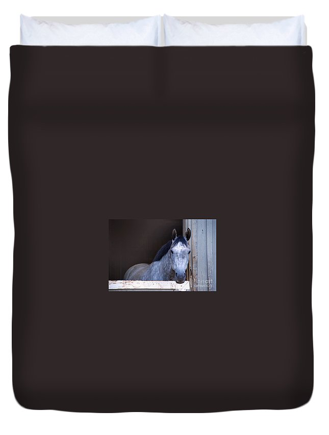 Ellie Duvet Cover featuring the photograph Ellie by Photos By Cassandra