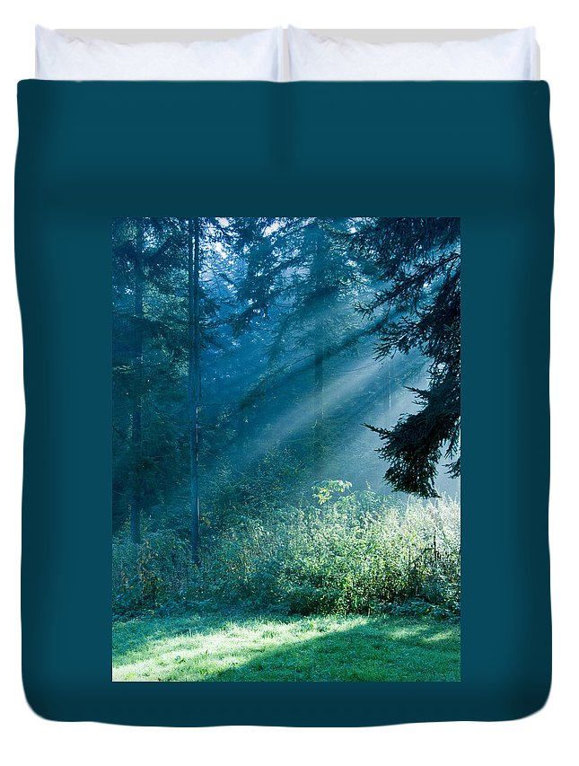 Nature Duvet Cover featuring the photograph Elven Forest by Daniel Csoka