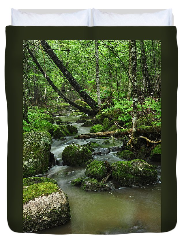 Forest Duvet Cover featuring the photograph Emerald Forest by Glenn Gordon