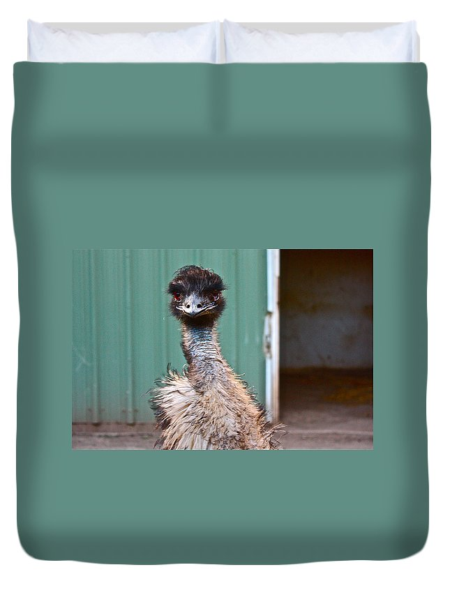Emu Duvet Cover featuring the photograph Emu by Carol Tsiatsios