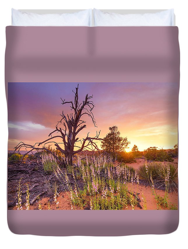 Desert Sunset Duvet Cover featuring the photograph Enchanted by Emily Dickey