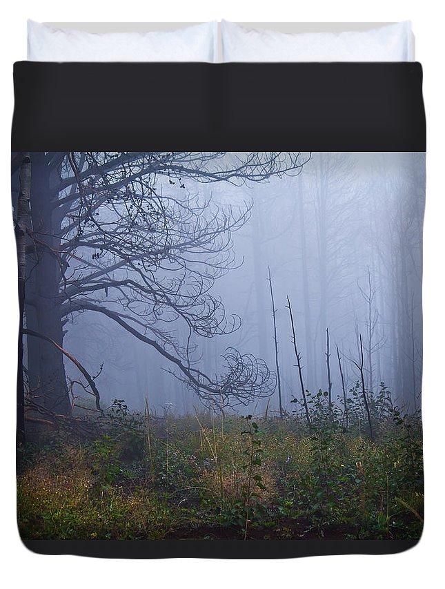 Fog Duvet Cover featuring the photograph Enchanted Mist - Casper Mountain - Casper Wyoming by Diane Mintle